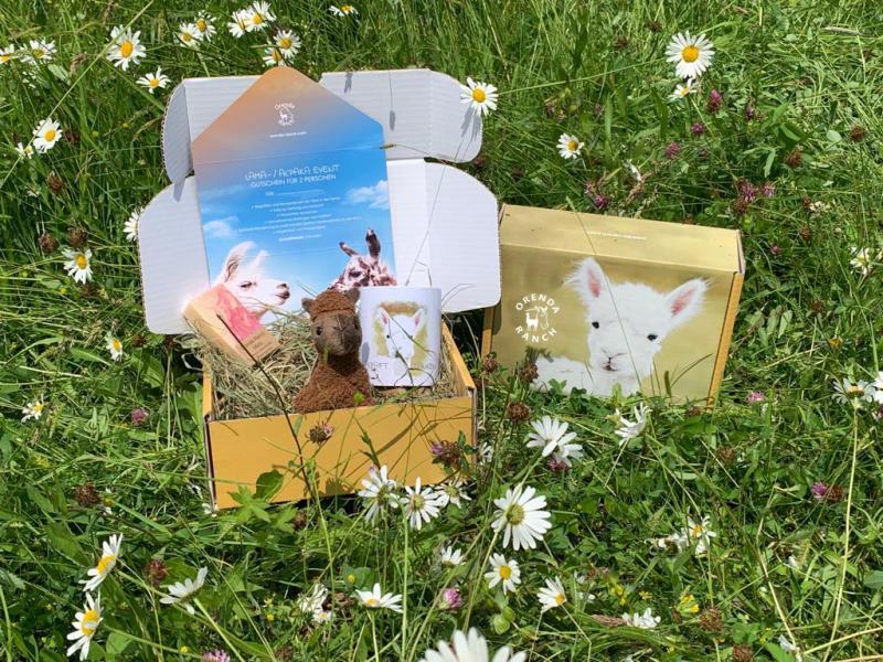Orenda Geschenkbox - Auf zur Alpakawanderung!